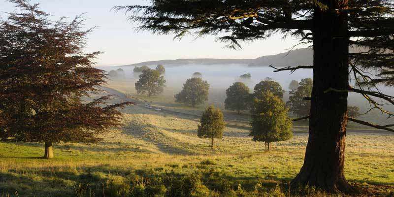 Chatsworth seasonal walks